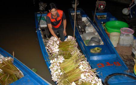 Cận cảnh những chợ cá đồng họp giữa đêm khuya mùa Lũ miền Tây