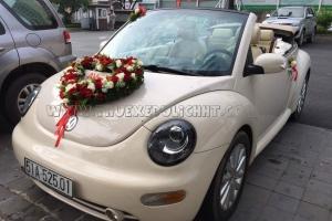 Xe Cưới Mui Trần Volkswagen